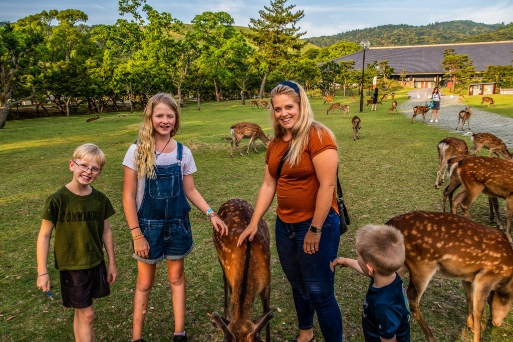 Petting deer with my kids
