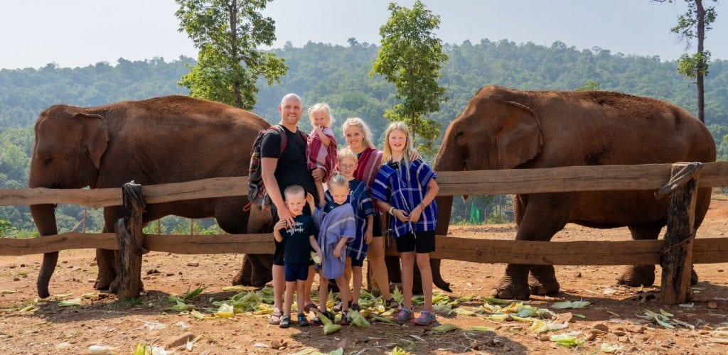 trip around the world- elephants in Thailand